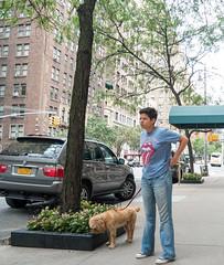 Not Exactly Jumping Jack Flash (UrbanphotoZ) Tags: woman rollingstones tshirt jeans dog walking wheaten trees flowerbox westendave upperwestside manhattan newyorkcity newyork nyc ny