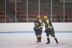 Hockey, LIU Post vs Princeton 29 (Philip Lundgren) Tags: princeton newjersey usa