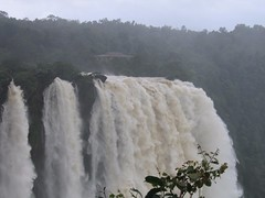 World Famous Jog Falls Photography By CHINMAYA M.RAO Set-1 (124)