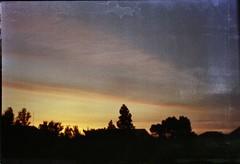 The place where I understand (paravolaris) Tags: filmphotography analoguephotography analogphotography kodak fujifilm promaster filmisnotdead 35mm film sky trees nightthoughts sunrise home beautifulplace