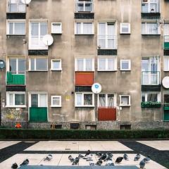Polski Blog (Barnaby Nutt) Tags: 201690 filmdev kodakportra400 poland yashica nowy targ plac