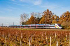 (Anthony Q) Tags: 06 dcembre 2016 tgv d 3ufc 853 train 538049 paris toulouse arbanats 33 sncf gironde locane bordeaux aquitaine