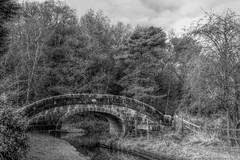 Bridge3 (Tony Tooth) Tags: nikon d7100 tamron 2470mm bw blackandwhite monochrome greyscale cie hdr bridge canal caldoncanal leekarm hazlehurst staffs staffordshire
