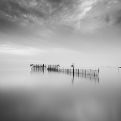 Soul Cather (Thanwan Singh) Tags: suramadu surabaya madura fishing photography longexposure bnw mono monochrome square dark bright seaside sea water clouds nd400 thanwansingh blackjuice7 reflection a99 km1735 wide nature fish prawns indonesia malaysia asia 2016 travelling travel seascape