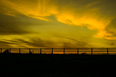 Missing Panel (Costigano) Tags: fencefriday fence sunset outdoor sky canon eos silhouette
