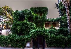 The corner house v01 (donbarnett2012(Finally got internet again!!)) Tags: trees house green vines hdr