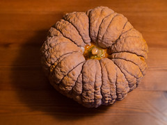Great Pumpkin (kasa51) Tags: digital pumpkin olympus f18 45mm omd   em5 mzuiko