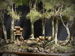 Penjing O caminho do templo (Aido Bonsai - Paulo Netto) Tags: bonsai penjing aido