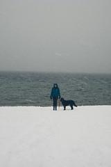 Blue Jacket, Black Dog (K. Castl) Tags: winter snow mountains northerncalifornia laketahoe nitewalks tumblrphotographers flickriamnotascientist