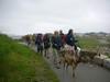 DeerIsland06-03-2012004
