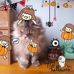 Halloween Stamp by PhotoUp is available on apple store!! | 13Designer 300 free stamps!!! For #Halloween season!! | ตั้งใจทำเพื่อขอบคุณแฟนๆ #photoupapp ทุกคนค่าาาาา #ribboncamera #halloweenstampbyphotoup **ปล.โหลด10แอพ โฟโต้อัพ โฆษณาจะหายปาย555 เล่นกันหนุก
