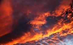 Sky (Rno) Tags: mygearandme mygearandmepremium mygearandmebronze mygearandmesilver mygearandmegold ringexcellence dblringexcellence vision:night=0836