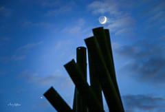 Sculpted Venus and Moon - Vic Thomas Sculpture Park Roanoke (Terry Aldhizer) Tags: park sculpture moon vertical night paul break venus thomas roanoke terry vic ostaseski aldhizer terryaldhizer terryaldhizercom
