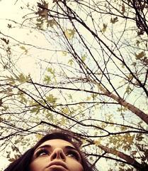 Sweet November. (Esseaemme) Tags: november autumn sky verde me foglie novembre grigio sweet occhi sguardo dolce cielo albero autunno freddo rami uploaded:by=flickrmobile flickriosapp:filter=nofilter