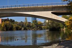 Entre puentes (1) (lumog37) Tags: riverside bridges rivers puentes ros riverscape paisajefluvial