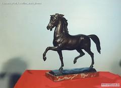 Edmondo Prati Cavallino arabo Bronzo