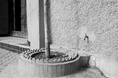 Scan-131230-0055.jpg (mathendrix) Tags: africa street analog blackwhite marrakech roll2 nikonf3 marroco fujineopan400 homedeveloping 2013 nikoncoolscan5000ed