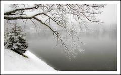 Beaver Lake Snow (Joe Franklin Photography) Tags: winter snow franklin asheville northcarolina beaverlake westernnorthcarolina northasheville almostanything wwwjoefranklinphotographycomjoe