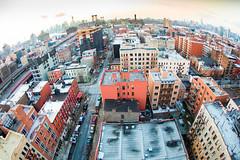 Don't Let Me Fall (Thomas Hawk) Tags: nyc newyorkcity usa newyork brooklyn america unitedstates fav50 manhattan unitedstatesofamerica fav10 fav25