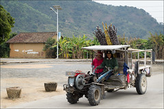 conghua-8694-ps-w (pw-pix) Tags: china road street old light people woman mountain tractor man building smiling concrete moving driving village bamboo riding guangdong oldvillage endoftheday southernchina conghua ancientvillage solarpoweredlight xuanxing xuanxingvillage returningfromtheirfields