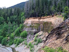 Until Next Time (joeball) Tags: green forest river washington spring state south may olympicpeninsula fork hike trail national olympic peninsula washingon skok skokomish