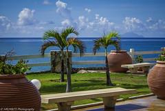 Garden (HRLM&TS Photography) Tags: sea dutch st garden bench island view martin sint palm pot caribbean maarten eiland antillen