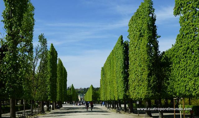 Paseando por los jardines del palacio de Schlonbrunn