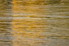 River Sunset (Pauline Brock) Tags: sunset orange reflection gold goldenhour flickrfriday riversunset