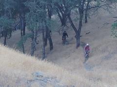 Lovely (MannyAcosta) Tags: china camp mountain andy bike shell cargo ridge cycle biking collins jamboree jackalope overnight rivendell entmoot s240 hillborne