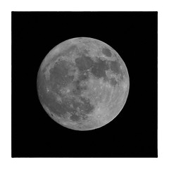 Super Moon - 111316 (gastwa) Tags: nikon df 300mm f40 teleconverter telephoto moon astronomy sky black white bw blackandwhite nature scenery landscape night rockville maryland washington dc travel andrew gastwirth andrewgastwirth full frame fullframe fx prime lens monochrome afs fresnel