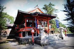 DSC_9873_副本 (Yuchi Wang) Tags: nikon d700 24120mm kagoshima fukuoka kyushu japan kyushutrip sakurajima