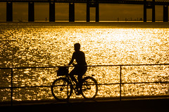 Bike - HFF! (Infomastern) Tags: malm sibbarp bike bridge bro bruygga cykel dock fence hav mnniska people railing sea silhouette siluett water resundsbron exif:model=canoneos760d geocountry camera:make=canon exif:isospeed=100 camera:model=canoneos760d geostate geocity geolocation exif:lens=efs18200mmf3556is exif:focallength=200mm exif:aperture=16 exif:make=canon