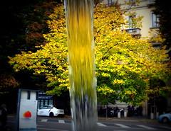 Acqua d'Autunno (lory6093) Tags: stagione autunno acqua albero colori citt