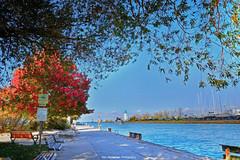 port dalhousie (Rex Montalban Photography) Tags: rexmontalbanphotography niagara autumn fall colour portdalhousie stcatharines