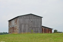 Rural America (Jake (Studio 9265)) Tags: barn old wooden rust field green june 2016 nikon d5000 ky kentucky usa united states america grayson county gray sky agriculture