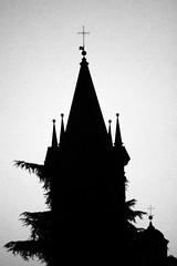 S. Domenico: bell tower and Church (Alfredo Liverani) Tags: canon40d canon 40d chiesa church kirche église iglesia església monocromo monochrome bianco nero biancoenero bn black white blackandwhite blackwhite bw neroametà europa italia italy italien italie emiliaromagna romagna faenza faventia faience faenza2016 belltowers
