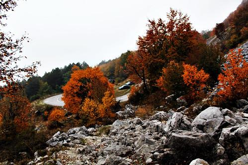 Autumn nature <3