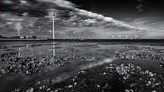 Shells (miguel_lorente) Tags: holland longexposure oosterscheldekering netherlands blacknwhite bnw blackandwhite bw windmill seascape nd filter zeeland