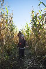 Look who I found in the maze :) (grilljam) Tags: seamus 4yrs cornmaze rickerhillorchard farm autumn october2016