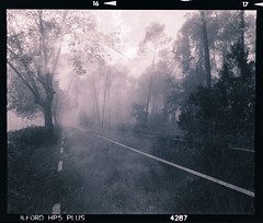 Doble exposicin de fortuna. Atmsfera invernal. (el vol d'Icar) Tags: mamiya rb67 begues invierno hivern
