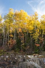 Hancock Overlook, Kancamagus Highway (alohadave) Tags: autumn fall hancockoverlook kancamagushighway newhampshire northamerica pentaxk5 places season unitedstates smcpda1650mmf28edalifsdm