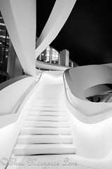 _MG_1390-Editwtmk (www.ThruMarzenasLens.com) Tags: dorianaandmassimilianofuksas italian marzenagrabczynskalorenc massimilianofuksas nyc architectural architecture bw blackandwhite building concept contemporary creative design dimentional futuristic geometric geometrical interior lines modern perspective project staircase stairs stairway steps structure white wwwthrumarzenaslenscom