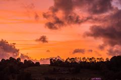 La campagne Normande (o.penet) Tags: couleurs soir sundowns couchers soleil campagne ciels skyes normandy clouds nuages