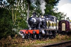 Prairie Portrait (Peter Leigh50) Tags: gcr gwr prairie tank engine steam 45xx 4566 rothley brook great central railway autumn gala 2016