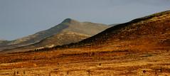 Femunden (wollruth) Tags: femunden drevsjø ørkenlandskap ørkenfarger fjell høstfjell