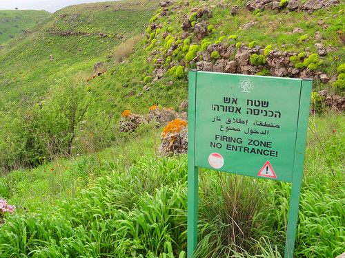 Golan Heights Spring