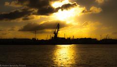 :) (Robert Benatzky Picture) Tags: sunset sonnenuntergang sonne sun hafen harbour hamburg germany lichtreflektionen lightreflection licht lights sunshine sonnenschein colorsofsunset silhouette robertbenatzkypicture gold goldenerhimmel goldensky han t