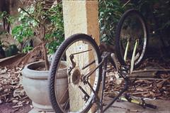 rodas pro alto (dvasconcellos27) Tags: exakta zeiss slr analog filmisnotdead filmisalive filmphotography kodak colorplus capucho riodejaneiro brasil brazil