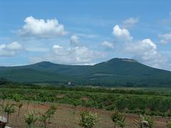 Vilgos-hegy, Tt-hegyes (ossian71) Tags: magyarorszg hungary mtra termszet nature tjkp landscape hegy mountain