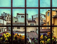 Italian Morning (clabudak) Tags: italy morning flowers roofs rooftops window platinumheartaward